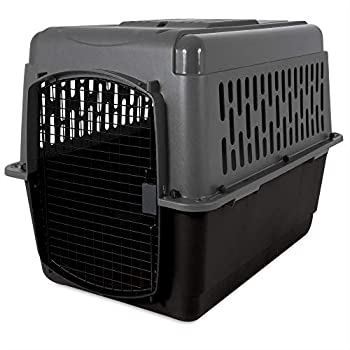 Aspen Pet Porter Travel Kennel  for Pets up to 70 pounds
