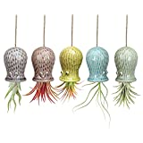 Mimeela 5 Pack Air Plant Holder Unique, Cute Octopus Air Plant Hanger Wall Planter, Ceramic Tillandsia Airplants Holders Hanging Wall Decor for Home Office (Small ( 2 x 3.2 in))