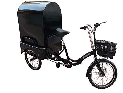 Triciclo eléctrico Adulto para Carga