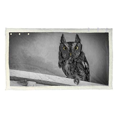 Lupinz Decke mit Eulen-Motiv, Kunstgemälde, Kunstfell, Überwurf, Decke, 127 x 152 cm, mit Knopf, 80 x 135 cm