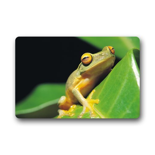 Doubee générique Frog Premium Tapis antidérapant Pied Tapis Anti-Poussière rectangulaire Porte Tapis 60 cm x 40 cm, Tissu, E, 23.6\
