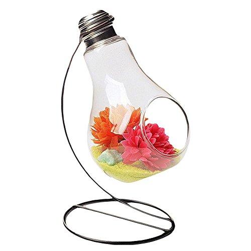 ruikey Leuchtmittel geformte Glas Vase klein Kugel transparent Pflanze Blume Vase für Office Home Dekoration, a, #1
