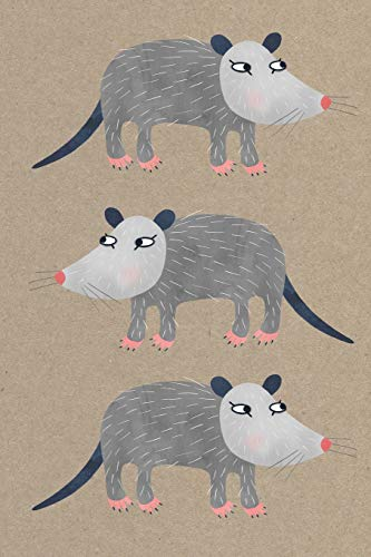 Notes: A Blank Sketchbook with Cute Possum Cover Art