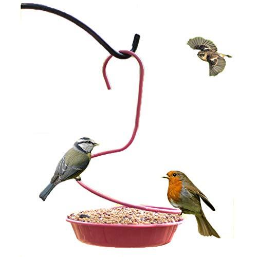 Alimentador de la bandeja de la flor del metal del baño del pájaro para las aves, los aves silvestres Waterer como ideas de regalos para los amantes de los pájaros, la barandilla montada,With holes