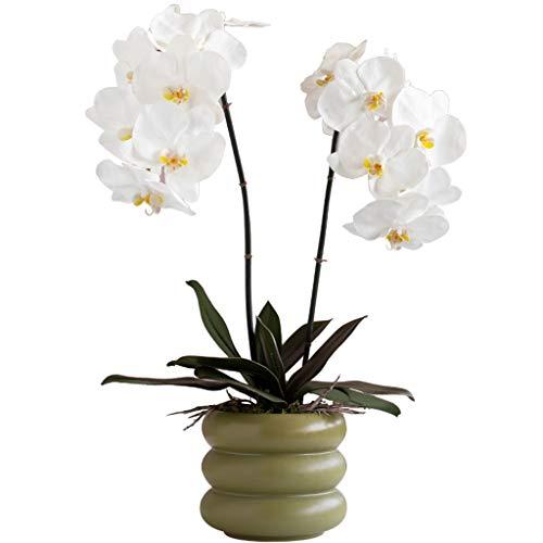 """Künstliche Orchideen-Blume mit Keramik Vase Set weißen Phalaenopsis-Blumen-Imitat-Orchidee Gefälschte Blumen Topfpflanzen, 23.6\"""" H"""