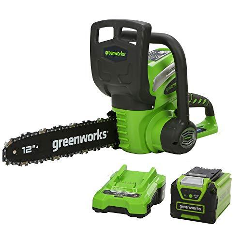 Greenworks Motosierra con mango batería G40CS30K2 (Li-Ion 40V 4,3 m/s velocidad de cadena 30cm longitud de espada 120ml volumen tanque aceite incluyendo batería de 2Ah y cargador)