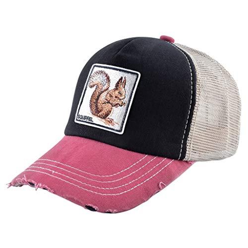 JOYKK Algodón Vintage Irregular Cool Gorra de béisbol Animal Bordado Malla Volver Ajustable Trucker Hat - 2# Squirrel + Black