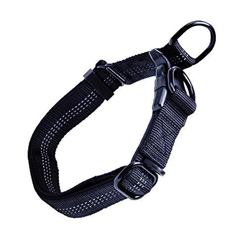 Gobesty Reflektierend Halsband, Verstellbare Nylon Hunde Halsband 43-60cm Hundehalsband mit Sicherheitsverschluss für Katzen Kleine Hunde