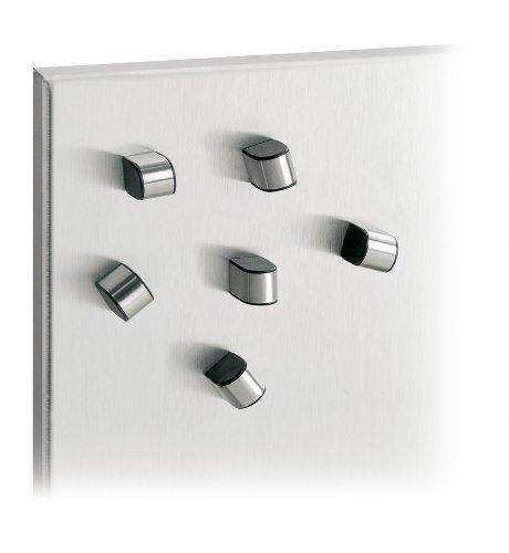 Blomus 66673 Set 6 Magnete Tewo