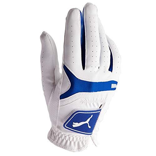 Puma Golf 2017 Men's Sport Performance Glove (Surf The Web, Small, Right Hand)
