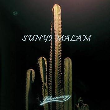 Sunyi Malam