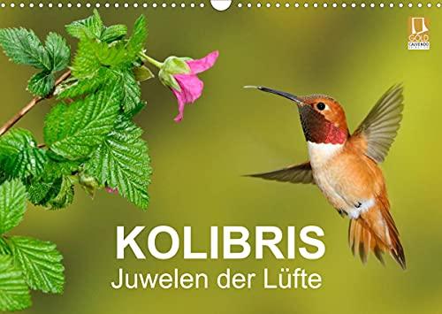 Kolibris - Juwelen der Lüfte (Wandkalender 2022 DIN A3 quer)