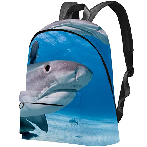 Gill Shark College Bag Large School Backpacks Casual Daypacks for Girls