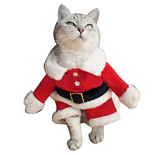 Traje Gato Navidad marca BPURB