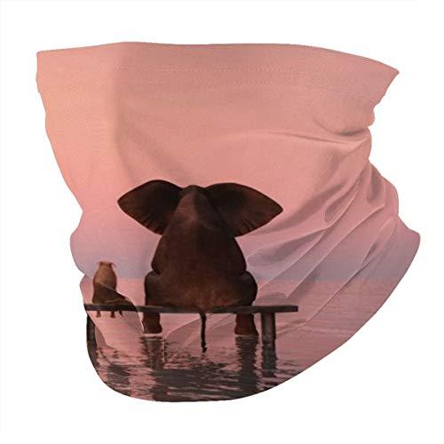 Variedad bufanda para cabeza, personalizada, para exteriores, diadema deportiva, vista trasera de elefante y perro en la puesta de sol