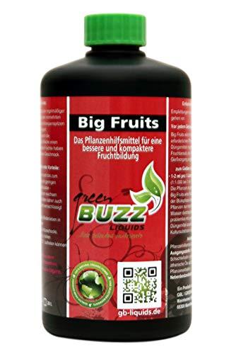 Green Buzz Liquids Big Fruits Standard 500ml