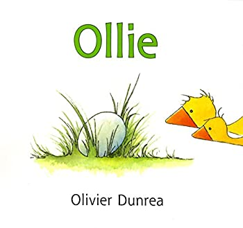 Ollie image cover