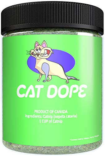 Cat Dope Catnip, Maximum Safe Blend for Cats, Infused with High Premium Potency Your Kitty is Sure to Go Crazy for (1 Cup)