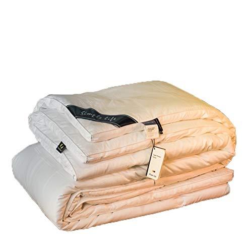 Duvet individual/doble/rey suavidad, antibacteriano, tejido de microfibra antiacariano, ligero, accesorio de cama de poliéster, para verano/primavera/otoño 003 (tamaño: 220 cm x 240 cm)