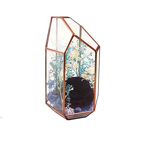 Planta Geométrica Terrario Plantas Duradera Claro Irregular del Prisma geométrica terrario for suculento de Aire Tabla de la Boda del Café (Rose Gold) (Color : Rose Gold, Size : 11.5X10X19.0CM)