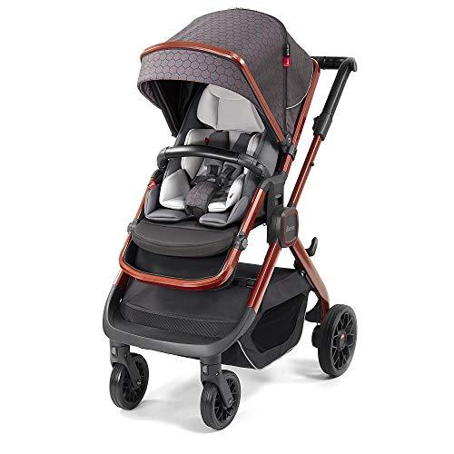 Diono Quantum2, 3-in-1 Luxury Multi-Mode Stroller, Charcoal Copper Hive (72303)