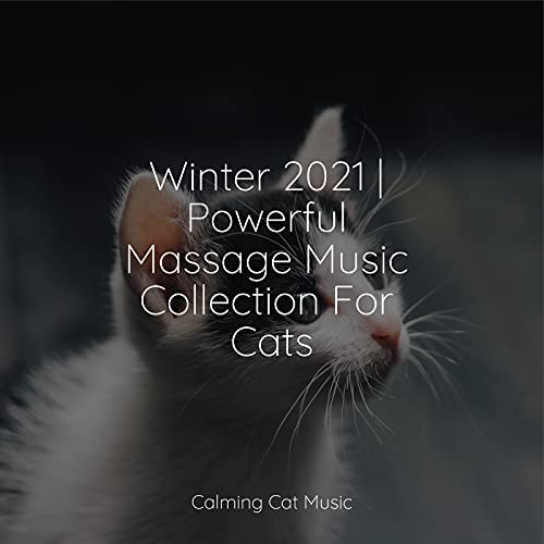 Cats Music Zone, RelaxMyCat & Music for Cats Project