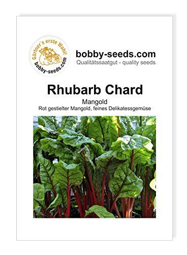 Bobby-Seeds Gemüsesamen Rhubarb Chard, Mangold Portion