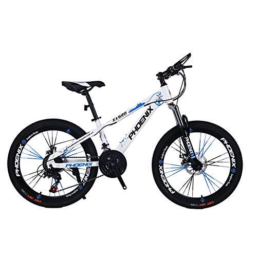 bicicleta r24 niño fabricante Bicicleta para niños