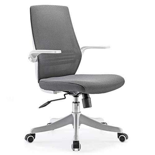 SIHOO Mesh Office Chair, Office Desk Chair, Breathable Chair with Comfortable Lumbar Support, Liftable and Reversible Armrest, Nylon Silent Casters(Grey)