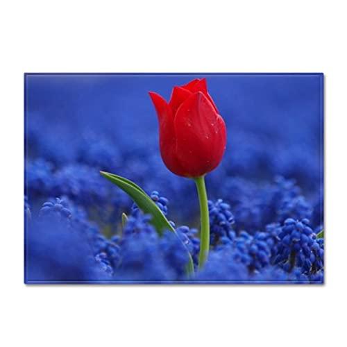 DRTWE Tapis,Fluffy Velvet Area Rug Living Room Pretty Red Rose Blue Leaf Printed Kid