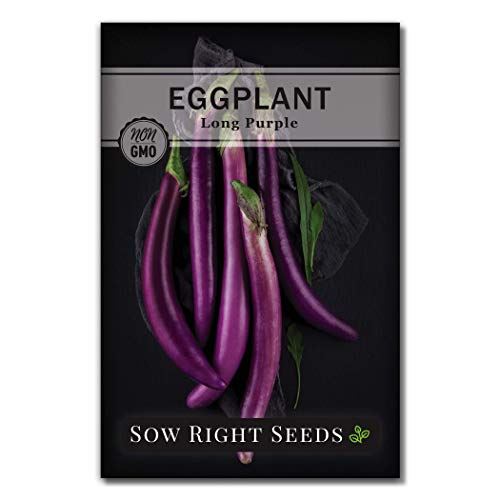 Sow Right Seeds - Long Purple Eggplant Seed for Planting - Non-GMO Heirloom Packet with Instructions to Plant an Outdoor Home Vegetable Garden - Great Gardening Gift (1)