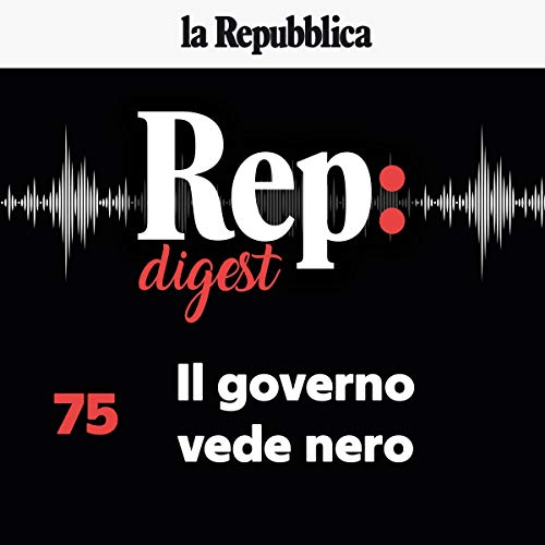 Il governo vede nero audiobook cover art