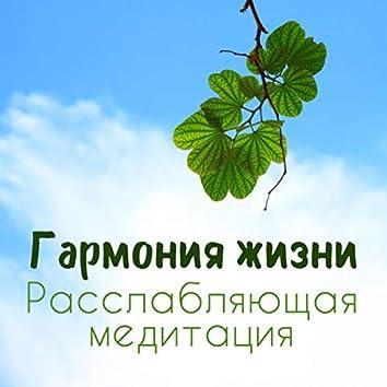 Гармония жизни - Расслабляющая медитация, Контроль дыхания, Снятия стресса, Спокойствия, Счастье и удовольствие