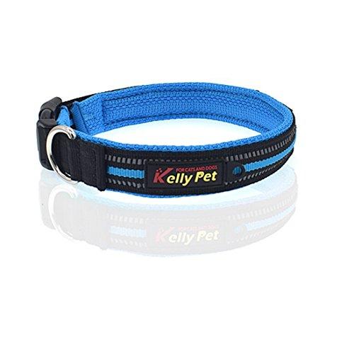 Tuzi Qiuge Haustierel Leine Hundehalsband Traktion Blei Seil, Anti-Lost Marke Dog Klassische Polyester Reflektierende atmungsaktiv gemütlich (Color : Blue)