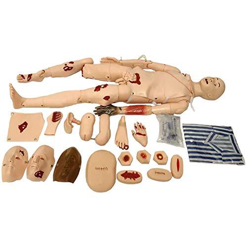 WRQ Simulador Multifuncional Atención Al Paciente, Maniquí Enfermería, Primeros Auxilios, Trauma, Modelo Anatómico Humano con Órganos Vitales para La Formación Médica Enfermería