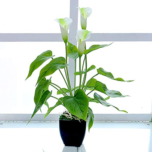 Künstliche Pflanzen, Pflanze...