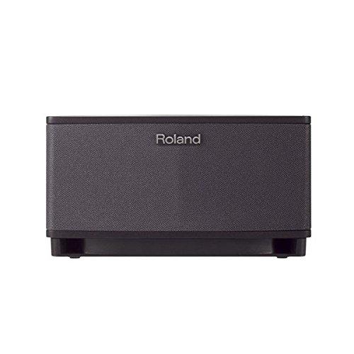 Roland Cube-Lt-Bk Cube Lite Amplificatore Combo per Chitarra