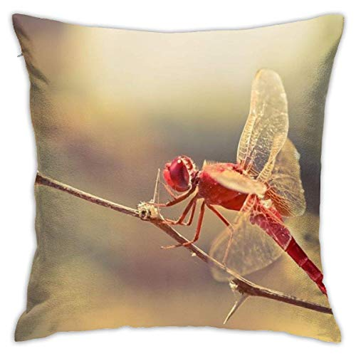 Kissenbezug Kissenhülle Kissenbezüge Kopfkissenbezug Rote Libelle mit Verstecktem Reißverschluss für Sofa Auto Bett,45x45CM