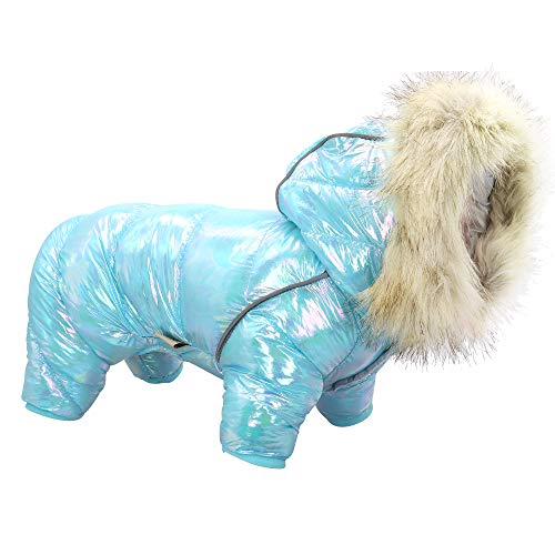 Beirui Waterproof Small Dog Coats for Winter - Warm Padded Pet Puppy...
