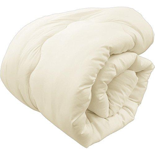 アイリスプラザ 掛け布団 吸湿発熱布団 洗える 抗菌 防臭 軽量 アイボリー シングル 65200108