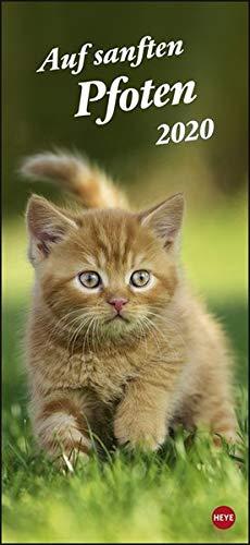 Katzen slim - Auf sanften Pfoten. Wandkalender 2020. Monatskalendarium. Spiralbindung. Format 16 x 34,7 cm