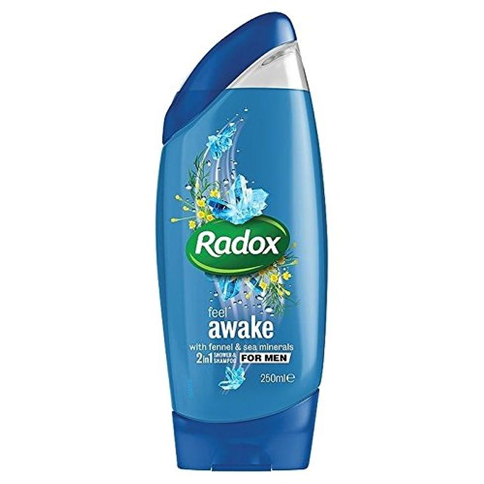 抜け目がない呼吸する器用Radox Feel Awake for Men 2in1 Shower Gel 250ml (Pack of 6) - は男性の21シャワージェル250ミリリットルのために目を覚まし感じ x6 [並行輸入品]