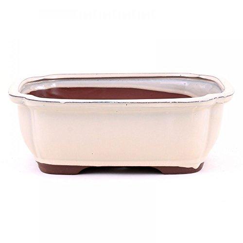 Bonsaï – Coupelle rectangulaire 26 x 21 x 9 cm, crème 30032