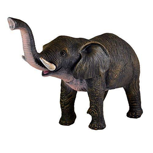 BW & H Elefante 17