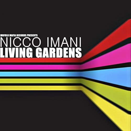 Nicco Imani