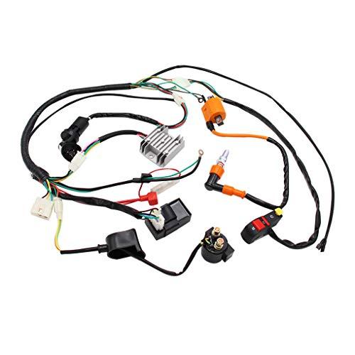Sunlera Ersatz für ATV Quad 150/200 / 250 / 300CC Hoch 200cc CDI Coil CDI Qualität kompletter Elektrik Kabelbaum Loom CDI Coil