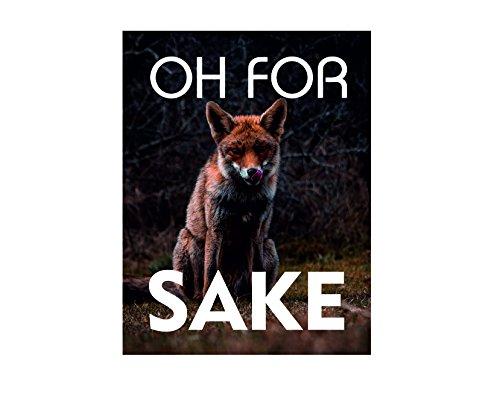 Ecool Oh for Fox Sake - Placa Decorativa para Pared, diseño Vintage con Texto en inglés Shabby Chic