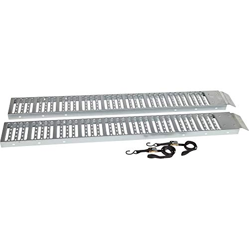 Ironton Non-Folding Steel Loading Ramp Set - 1000-Lb. Total Capacity, 6ft.L x 9in.W
