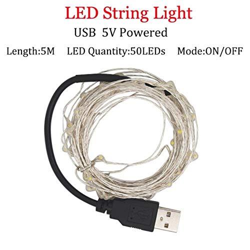 Lichtsnoer voor thuis, 10 m, 5 m, 2 m, zilverdraad, 5 V, USB-batterij