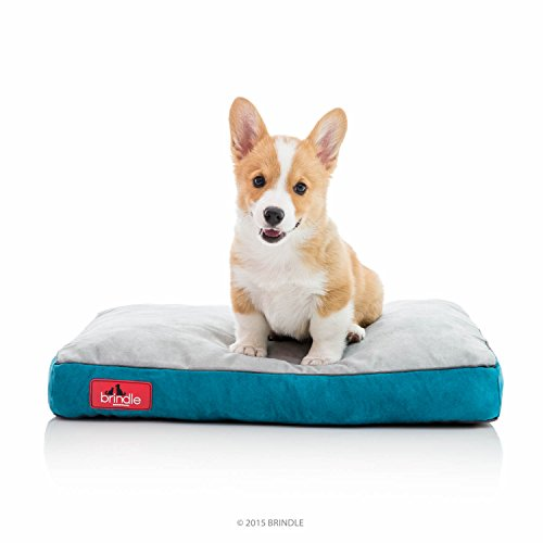 Brindle Shredded Memory Foam Dog Bed with Removable Washable Cover-Plush Orthopedic Pet Bed - 22 x 16 inches - Teal